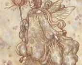 Teasel Fairy