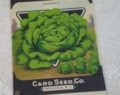 Card Seed Company, Lettuce seed packet, 1920's unused, Hanson's