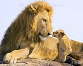 Safari Nursery Art, BABY ...