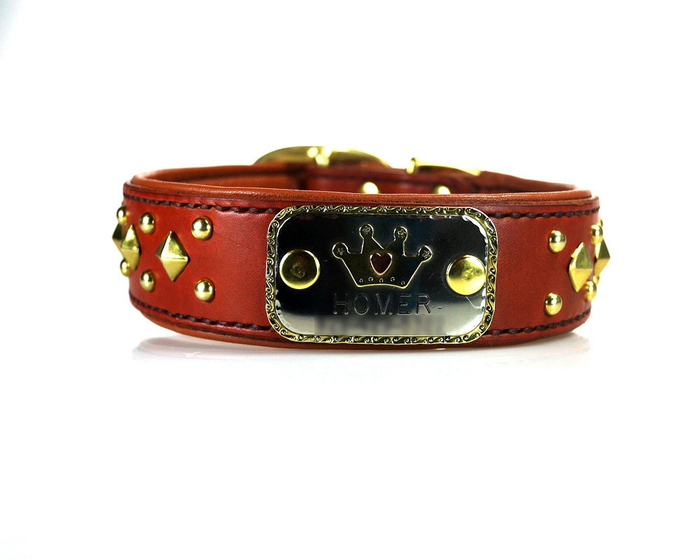 Name Plate Leather Dog Collar Collaboration with by