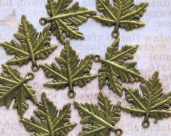 5 Maple Leaf Charms Antique Bronze Tone Terrific Details Large - BC1155