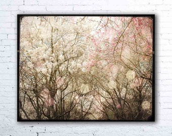floral decor - magnolia tree photography - pastel pink - fairy tale wall art