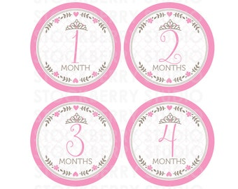 Princess Baby Month Stickers Girl Printable - Pink Baby Monthly Bodysuit Stickers - Iron On Transfer - Baby Month Milestone - Photo Props