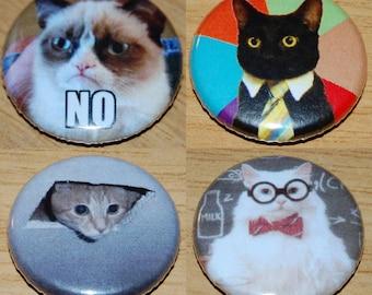 Cat Meme Badge Set 25mm / 1 inch Grumpy - Science - Ceiling - Business