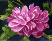 Peony Blossom , Watercolor Painting , Tiny Original Art
