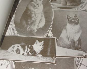 1911 Sepia Print Cats