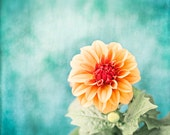 """Teal Orange Flower Photography, aqua blue turquoise coral salmon floral wall art botanical picture nature photo nursery, """"First Bloom"""""""