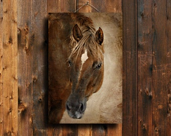 Chestnut Watching - Horse decor - Red horse decor - Horse photography - Chestnut horse photography - Animal photography - Horse art