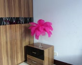 100pcs Hot Pink Ostrich Feather Plume for Wedding centerpieces,