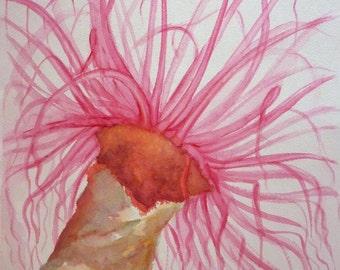 WATERCOLOUR Sea anemone