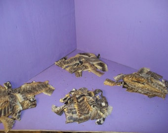 lot real rattle snake scrap animal tanned hide pelt skins parts taxidermy reptile leather supply