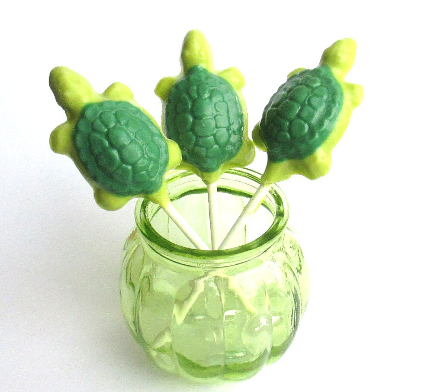 18 Turtle Lollipops Turtle Suckers Chocolate Lollipop