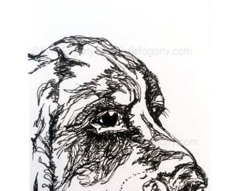 "Dog - ORIGINAL ACEO, Black and White, Line Drawing, Animal Art, ""Zuli - Close Up"", Original Art - Unique Gift"