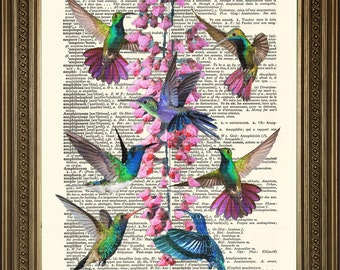 "Dictionary Print HUMMING BIRDS: Vintage Paper Art Gift (8 x 10"")"