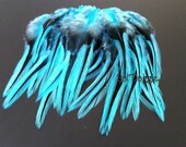 Vibrant Turquoise Feathers for Crafts Jewelry Supplies Turquoise Craft Feathers Turquoise Hair Supplies