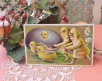 Charming Edwardian Era Easter Postcard-Chick Race