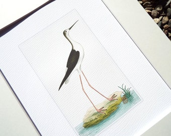 Sea Bird Crane Standing in Soft Blue Water Fine Art Archival Print