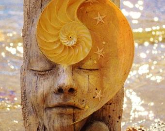 5 x 8 Print - Art Card, Dreams, Shell Beach Art, Sculpture by Shaping Spirit