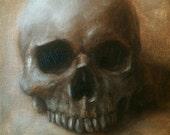 Original Oil Painting Skull Sketch