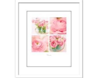 Flower Photo - Pink Ranunculus - Minimalist Photo - Poster - Fleurs - Flowers - Fine Art Photography Print - Pink White Modern Decor