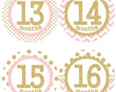 Baby Monthly Milestone Growth Stickers in Second Year 13-24 Months Gold Glitter Light Pink Dots Chevrons Nursery MS001c Baby Shower Gift