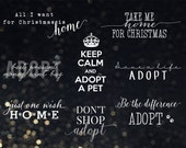 Photography Words Overlays (OVE008) - Support Adoption for Christmas, free bonus, glitter and gold digital paper