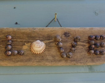 Love Driftwood and shell wall hanging