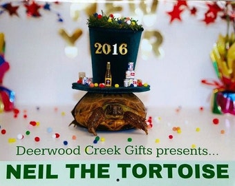 Blow out SALE Calendar, Neil the Tortoise 2016 Calendar, 2016 Calendar, Tortoise Calendar, Turtle Calendar