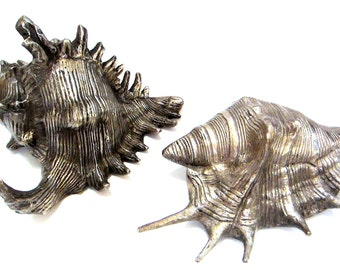 """Large 6"""" Shell Sculptures, Set of 2, Nautical Home Decor, Seashore, Beach Cabin, Conch Shell"""