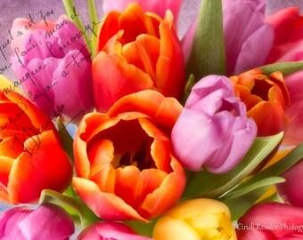 Photography, Photo, Tulip Bouquet, Fine Art, Floral, Flower, Nature Lover, Garden, Housewarming Gift, Living Room Decor, Botanical, Gift