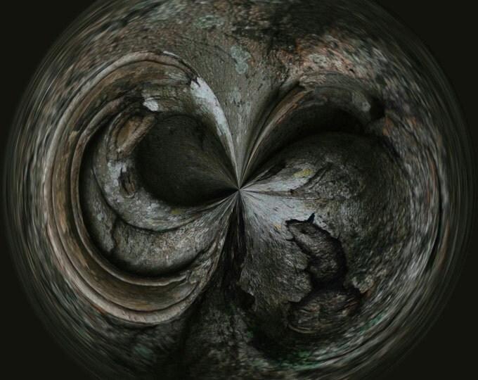 Rats!, Photography, Digital Art, Abstract Art, Nature Photography