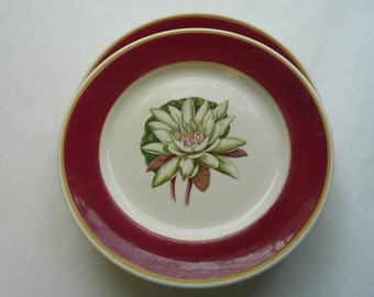 Syracuse, vintage restaurant ware, water lily, plate, set of two