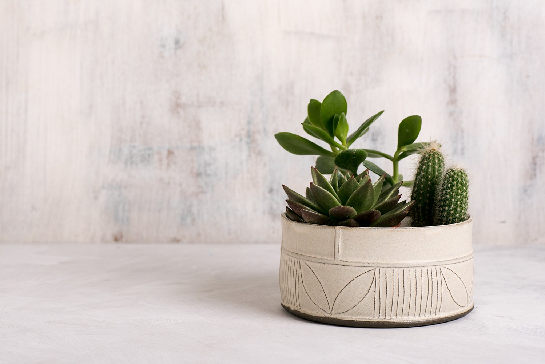 White Ceramic Succulent Planter Modern Ceramic Planter