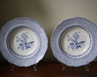 """Pair of antique Cork and Edge English Stone Works """"Vermicelli"""" porcelain pottery blue and white bowls transferware"""