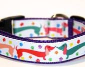 Dachshund Dog Collar, FREE SHIPPING, dog collar, adjustable dog collar, dachshund