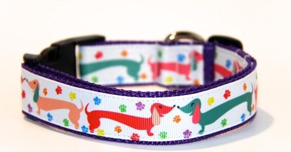 Dachshund Dog Collar, FREE SHIPPING, dog collar, adjustable dog collar, dachshund