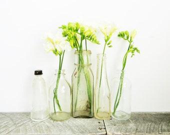 Glass Bottle Collection - Vintage Antique - Vase Grouping
