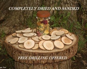 Rustic Wood Disc 425 Dried Tree Slices Medium Cherry Tree Cookies Wood Blanks Wood Burning Blanks Name Tags Wedding Decor Art Craft Blanks