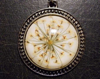 Delicate White Queen Annes Lace Preserved Specimen Necklace