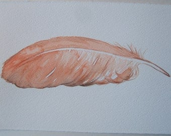 Coral Feather painting Watercolor original Feather illustration Small watercolor 7,5 by 11'' Home decor. Unisex gift idea