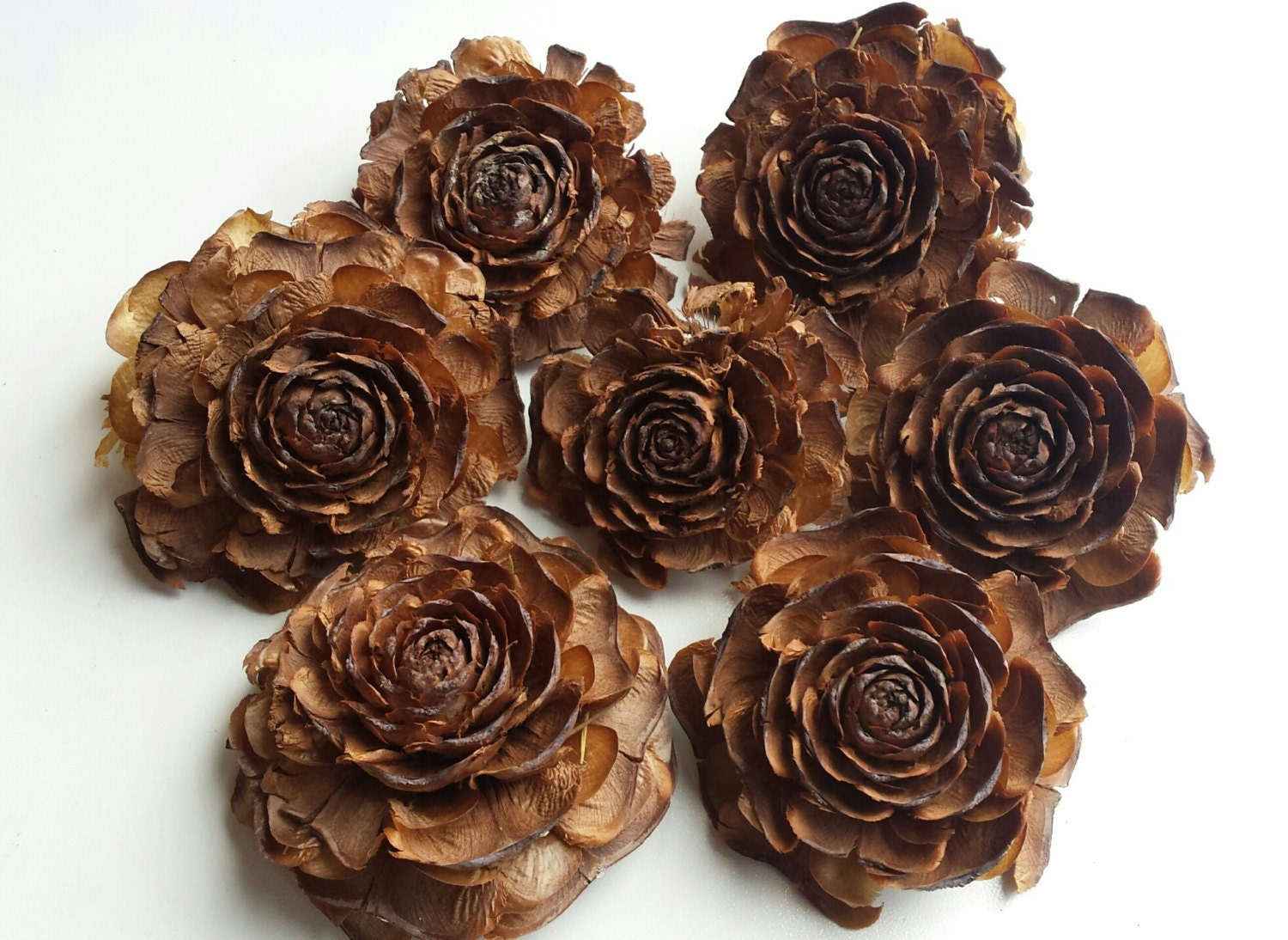 Cedar rose pine cones flower shaped pine cones pine cones - Pliage serviette pomme de pin ...