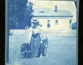 c1890 Lady & 2 large pet dogs in yard cyanotype photo