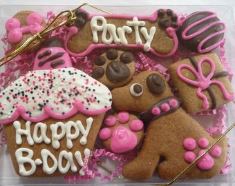 Happy Birthday Dog Treat Gift Set Personalized-Pink with Carob