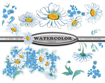 Watercolor Daisies & Forget-me-not flowers clip art, instant download