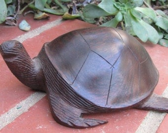 Carved Ironwood Turtle Sculpture