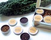 DIY Microgreens BRASSICAS Seed Kit Indoor Garden - Organic Vegan Gourmet Microgreens Seeds in Reusable Tin Gift Box - Veggie Superfood Kit
