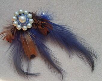 Hair clip/brooch