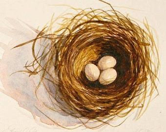 Original tiny bird nest watercolor painting