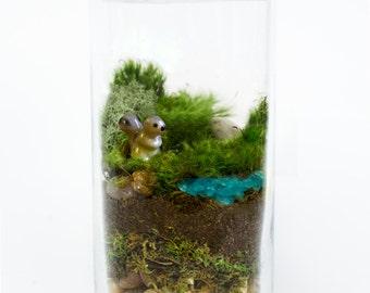Moss Terrarium // SQUIRREL!