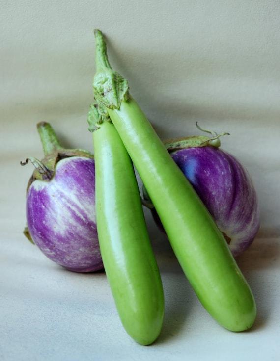Long Japanese eggplant Seeds